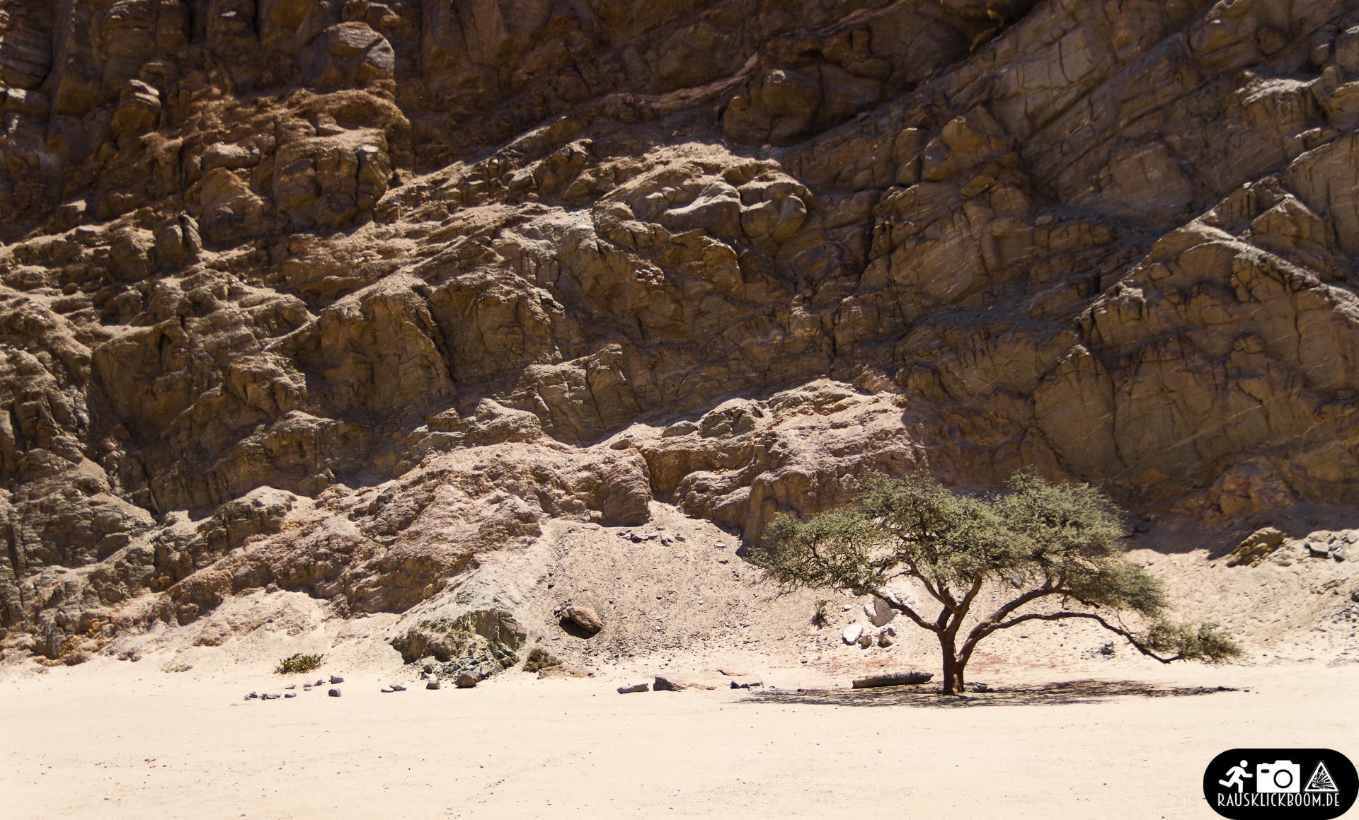 Namibia (29)